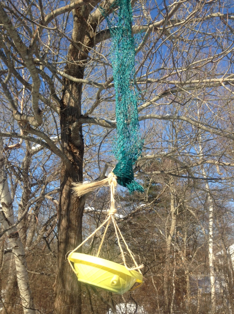 bird feeder second