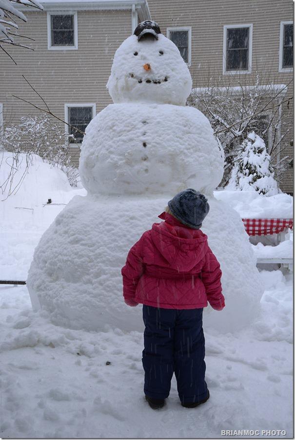 _DSC3273_snowman