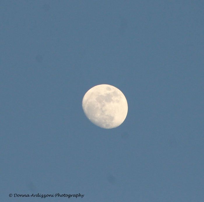 February 11, 2014 more moon