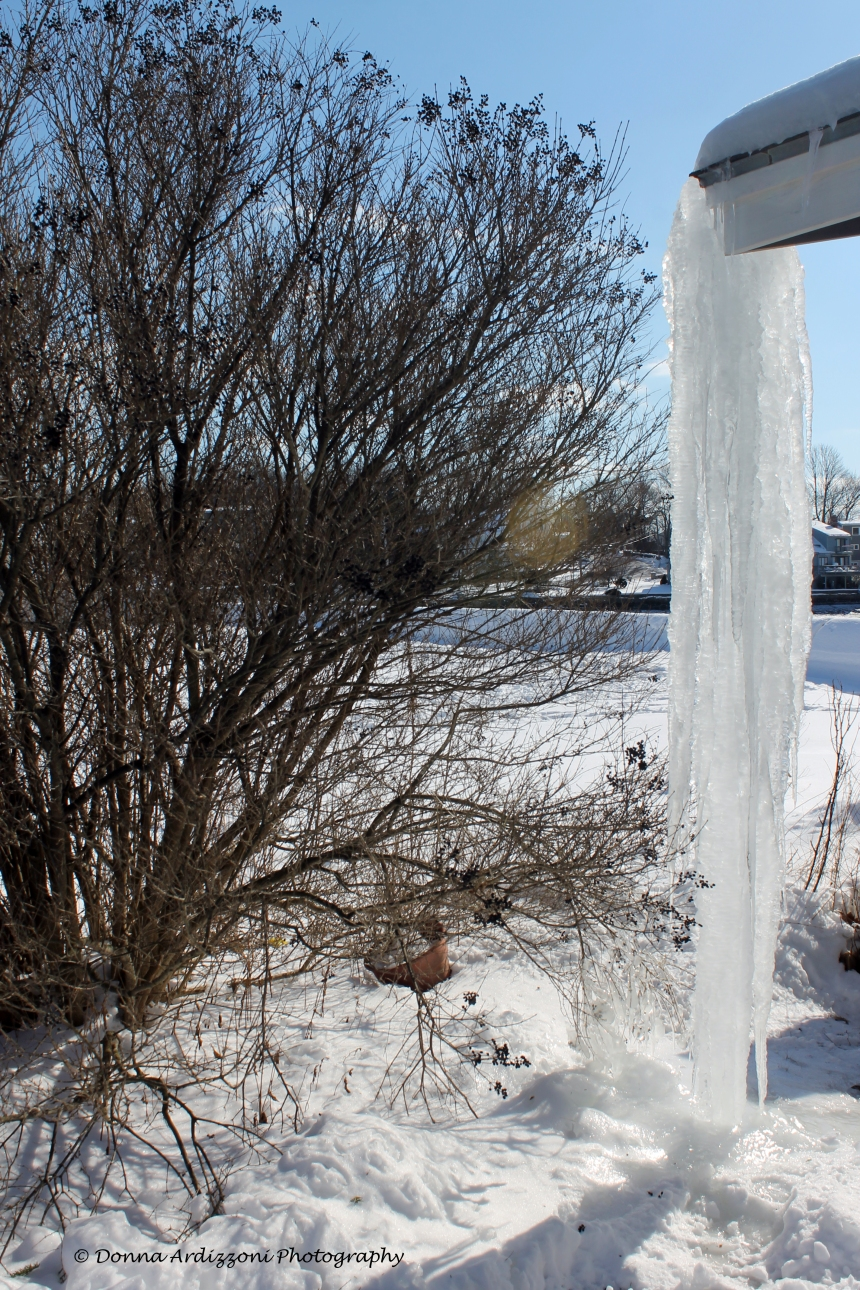 February 11, 2014 now that is a big ice