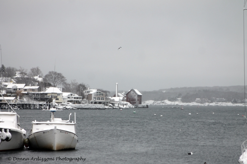 February 13, 2014 snow from Cripple Cove
