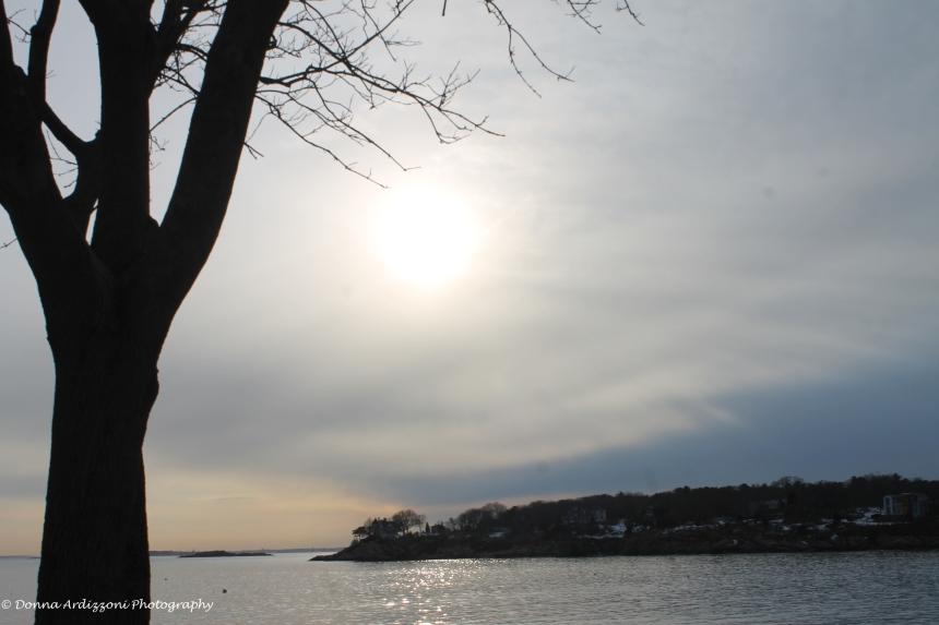 February 23, 2014 silver sky