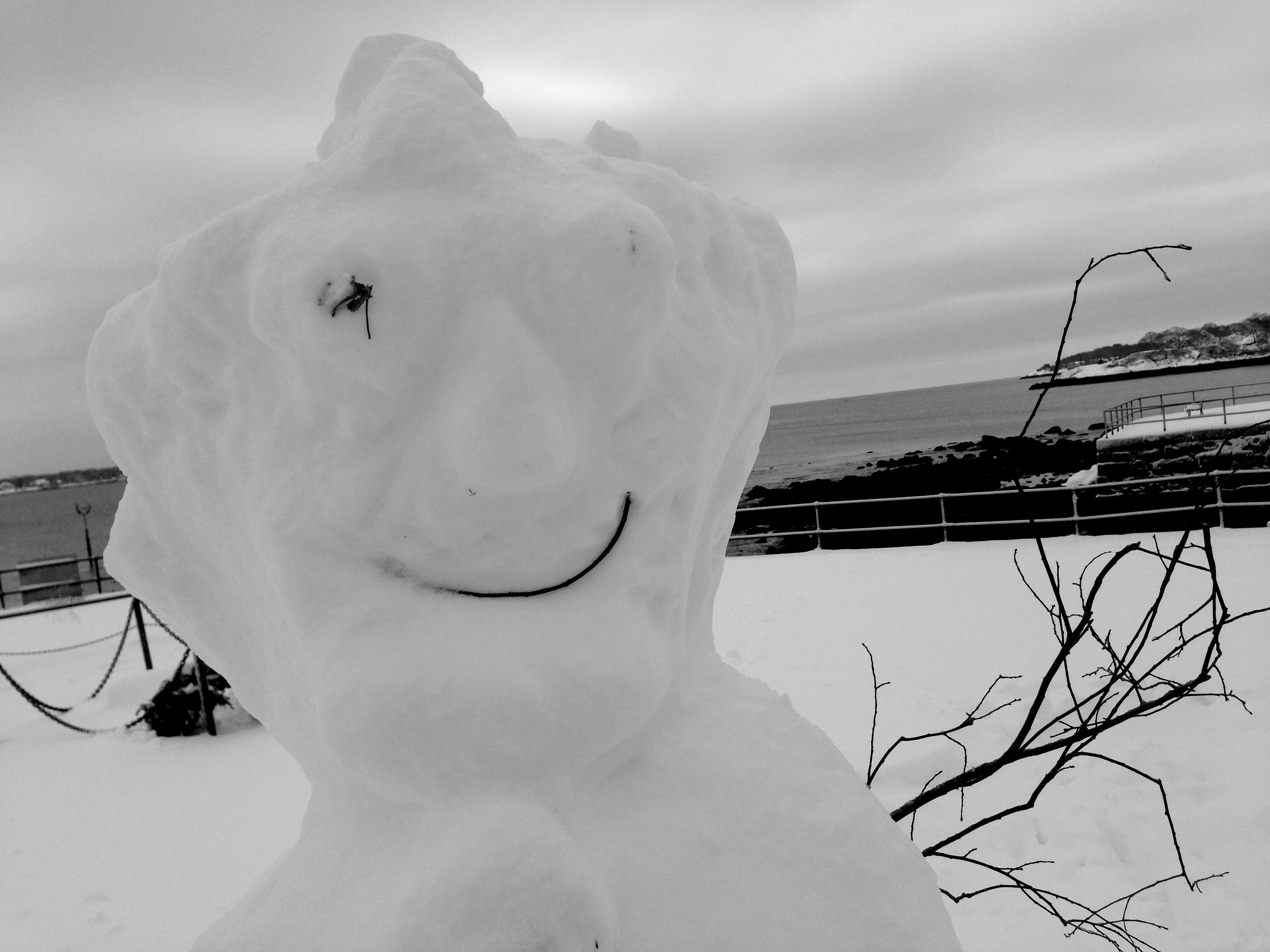 Bumpy snowman at the Blvd.