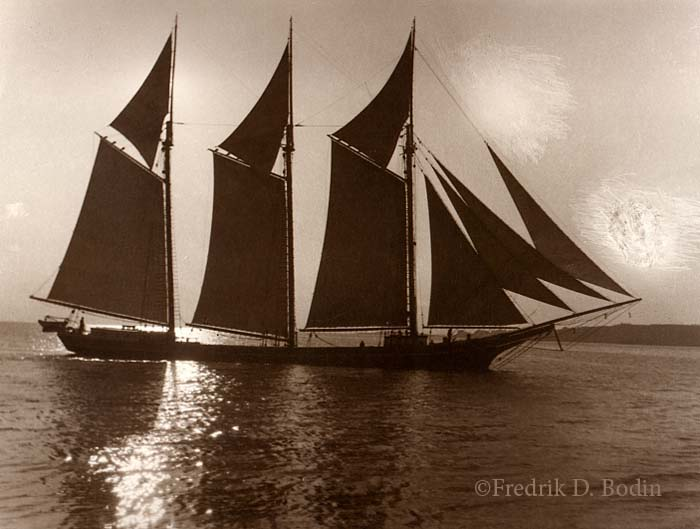"""Last night a friend and I watched """"The Sea Wolf."""" released in 1941. The Warner Bros. black & white film starred Edward G. Robinson and Ida Lupino. The movie is set on the three masted schooner """"Ghost"""", which looks like a schooner photo I have in my collection. After research on Google, I don't think there' a match. Based on a novel by Jack London, I believe the locaton is the Pacific West Coast."""