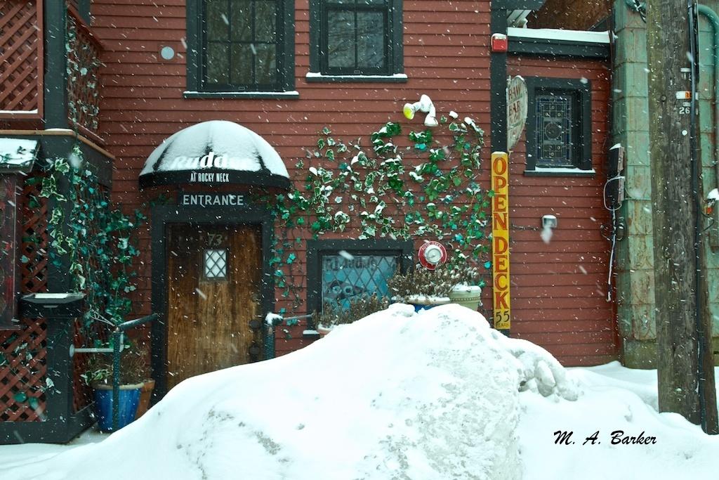 brighten a snowy day 1187