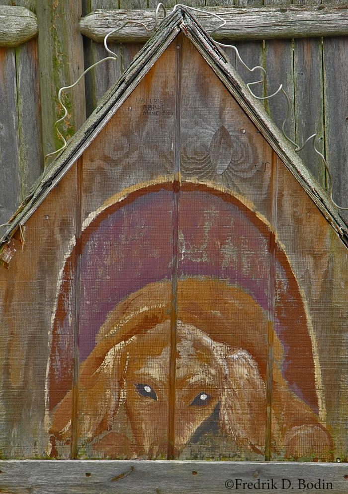 Dog House, Rockport