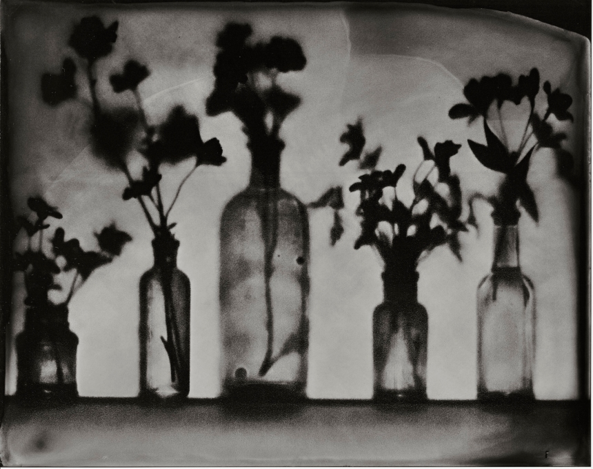 Flowers & Bottles 4 - tintype - 8x10