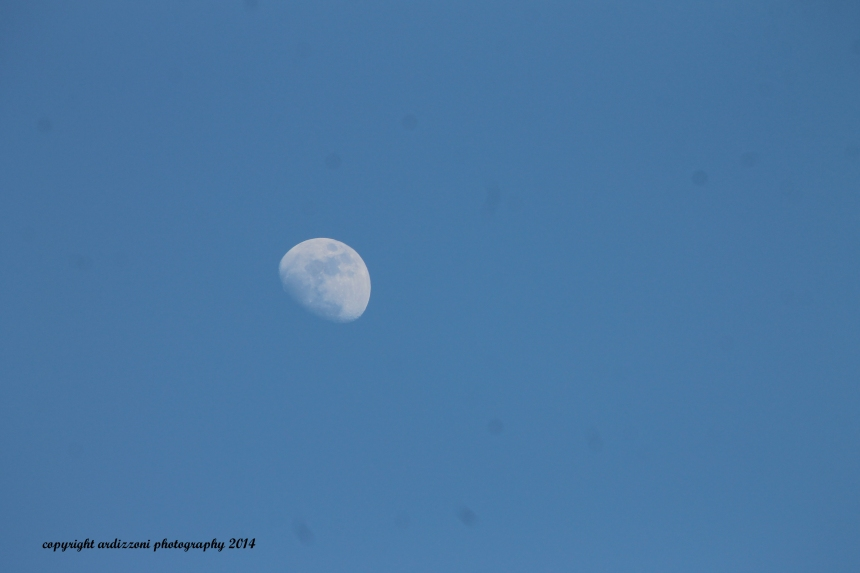 March 11, 2014 love when you can see the moon during the day
