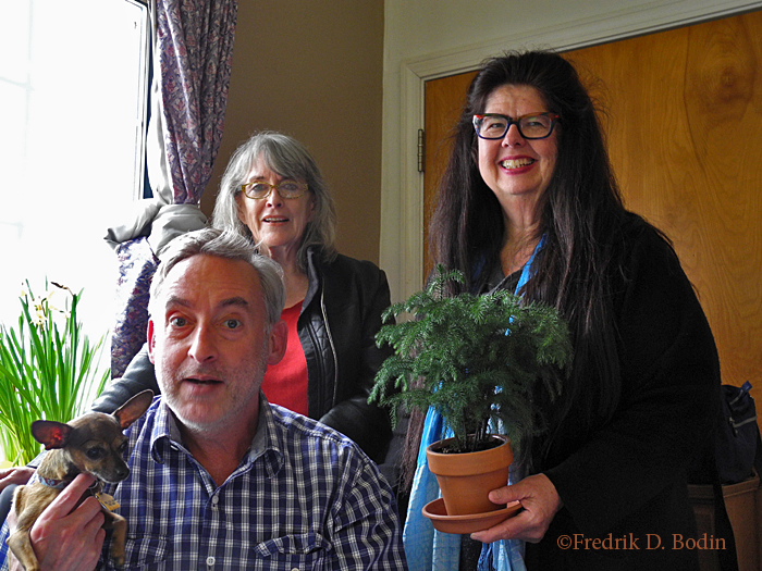 Chiwawa Pip, Book Designer Steve Bridges, Block Party Organizer Valerie Markley, Chef Debbie, Demakis, and a Norfolk Island Pine all came unannounced to visit me. All old friends, and the pine tree never left.
