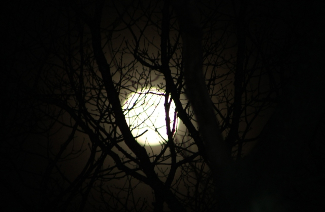 April 13, 2014 spooky moon