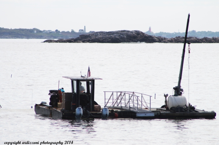 May 20, 2014 putting in the moorings