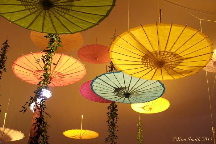 parasols -2 ©Kim Smith 2014