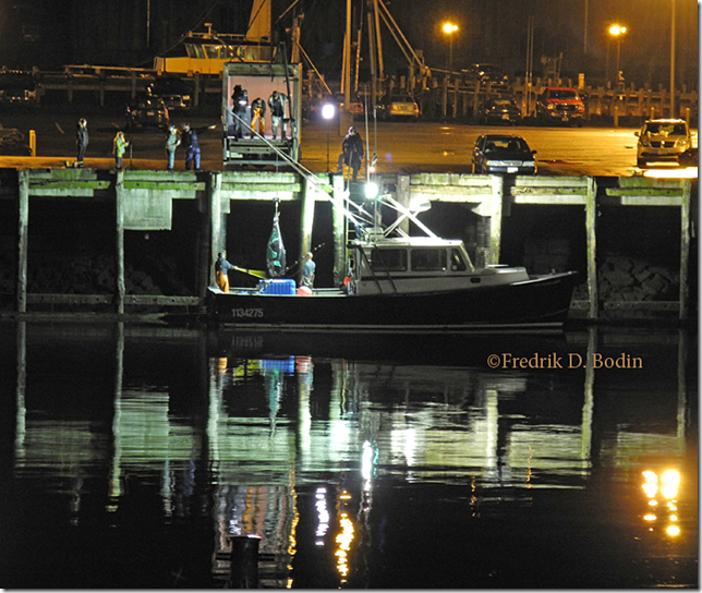 While dining at the Seaport Grille one night, I saw a huge tuna being offloaded across the channel under the movie lights (right). It's great to live here. www.cruiseportgloucester.com