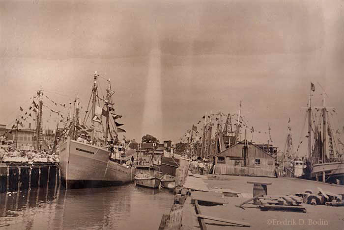 F/V Felicia is in the foreground (left) tied up and decorated for Saint Peter's Fiesta, as are many other fishing vessels in the background. Sailors, dressed in their whites, sit on the pier next to Felicia.