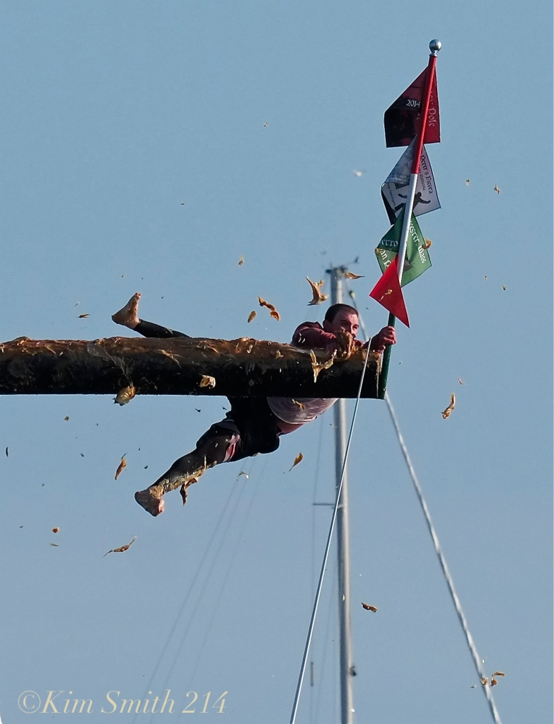 Greasy Pole Kyle Barry for the WIN! Saint Peter's Fiesta ©Kim Smith 2014