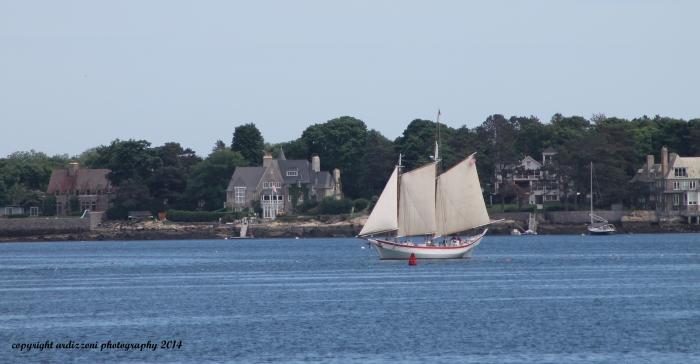 June 11, 2014 Ardelle in Gloucester Harbor