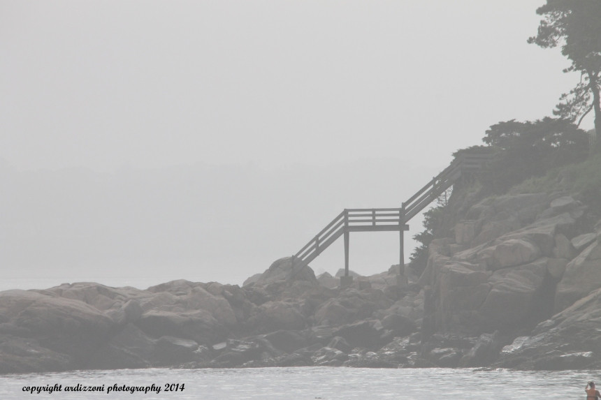 June 14, 2014 Staircase in the fog at Coolridge Reservation