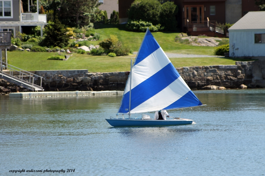 June 4, 2014 who is behind the blue and white strip sail boatt