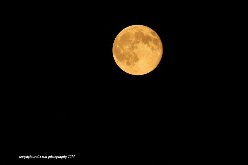 july 12, 2014 jul;y 12 super moon