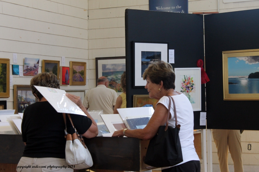 July 12, 2014 Magnolia Library Art Show