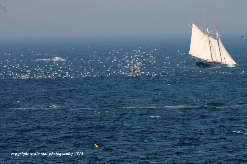 July 2, 2014 The Lannon and fishing boat