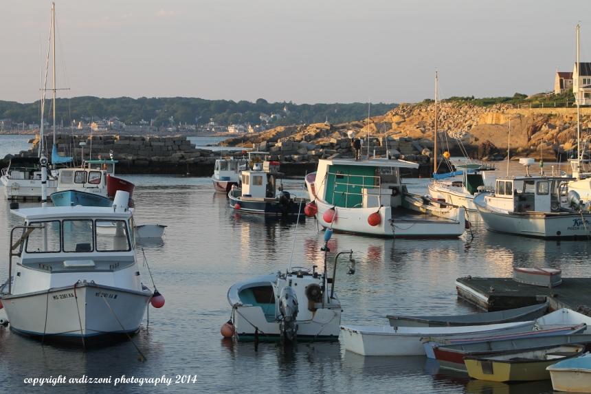 July 8, 2014 Pigeon Cove