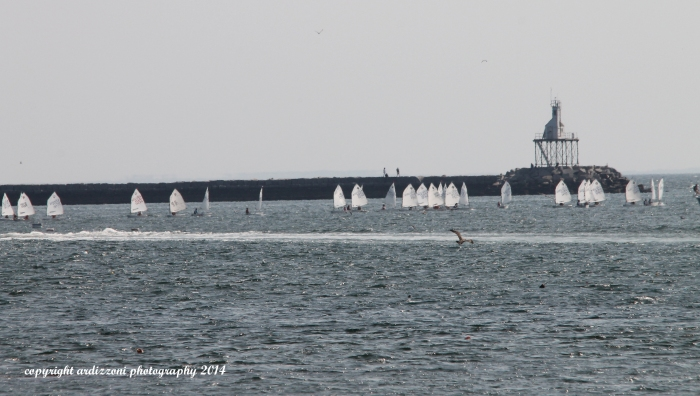 August 11, 2014 Junior Olympic Sailing Festival