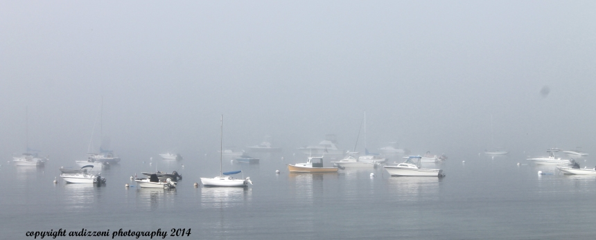August 4, 2014 Magnolia Beach in the fog