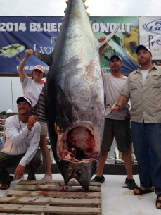 805 pounds