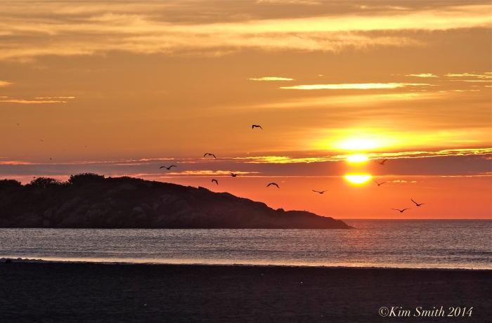 Good Harbor Beach ©Kim Smith 2014
