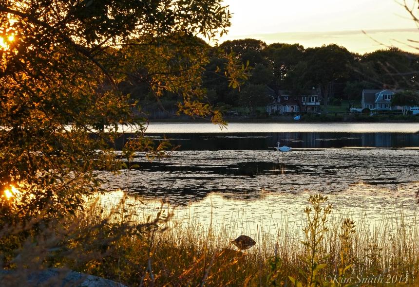 Niles Pond © 2014 Kim Smith