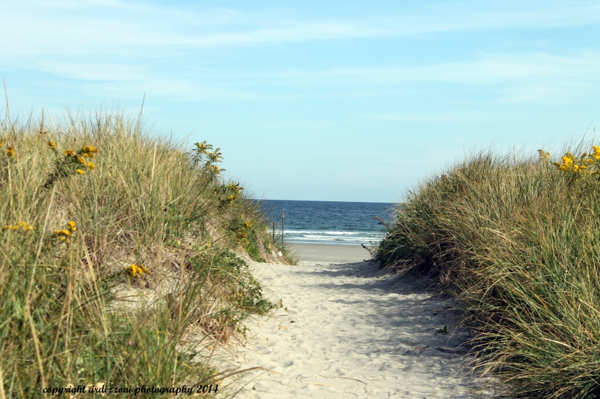 September 24, 2014 A path to relaxation