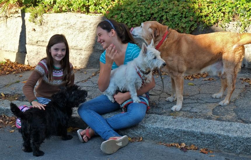 East Gloucester Dog Walkerrs ©kim Smith 2014