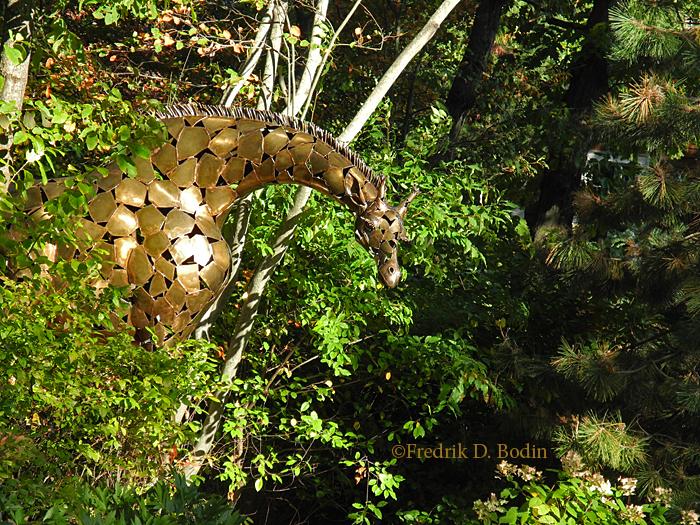Giraffe4939wm
