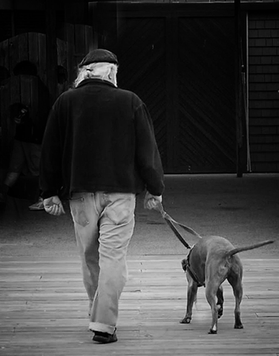 going-home_edited-1