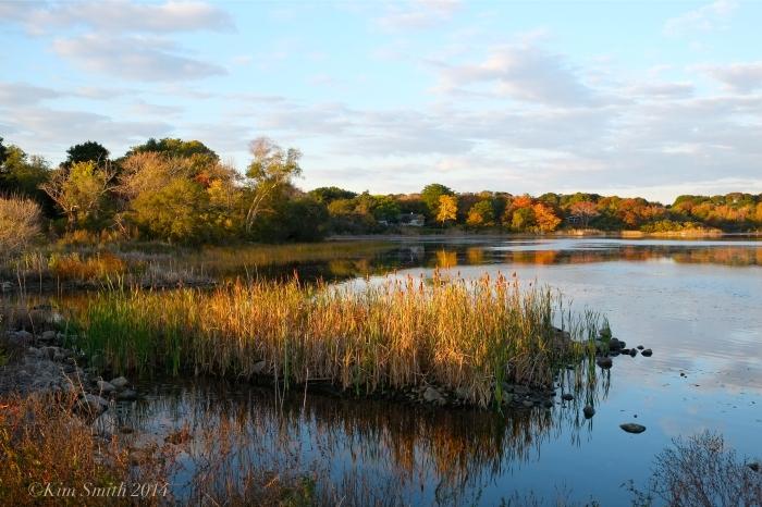 Niles Pond daybreak ©Kim Smith 2014