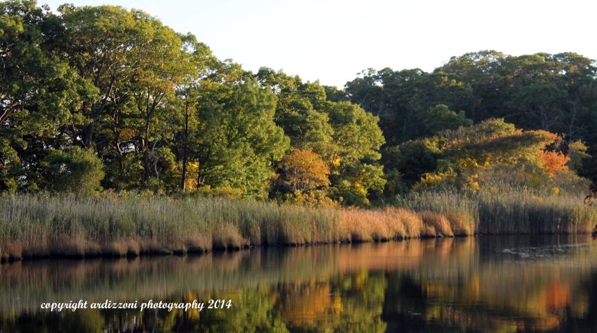 October 2, 2014 start of color at Clark Pond