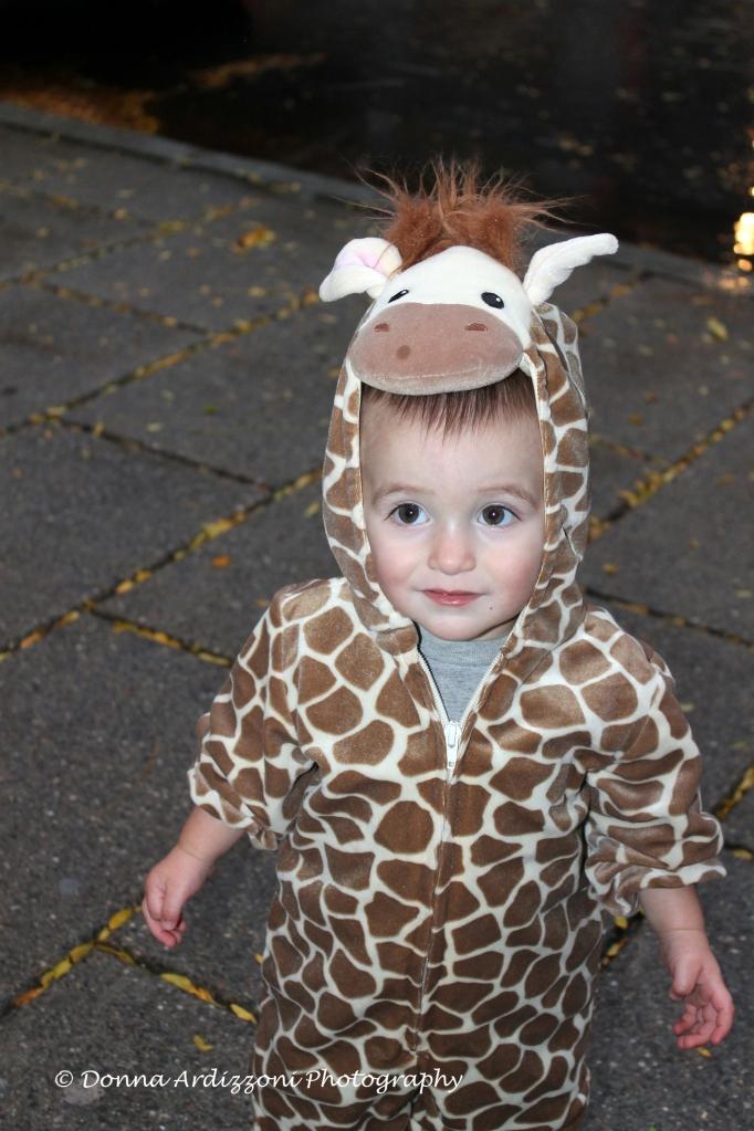 October 31, 2013 The littlest giraffee
