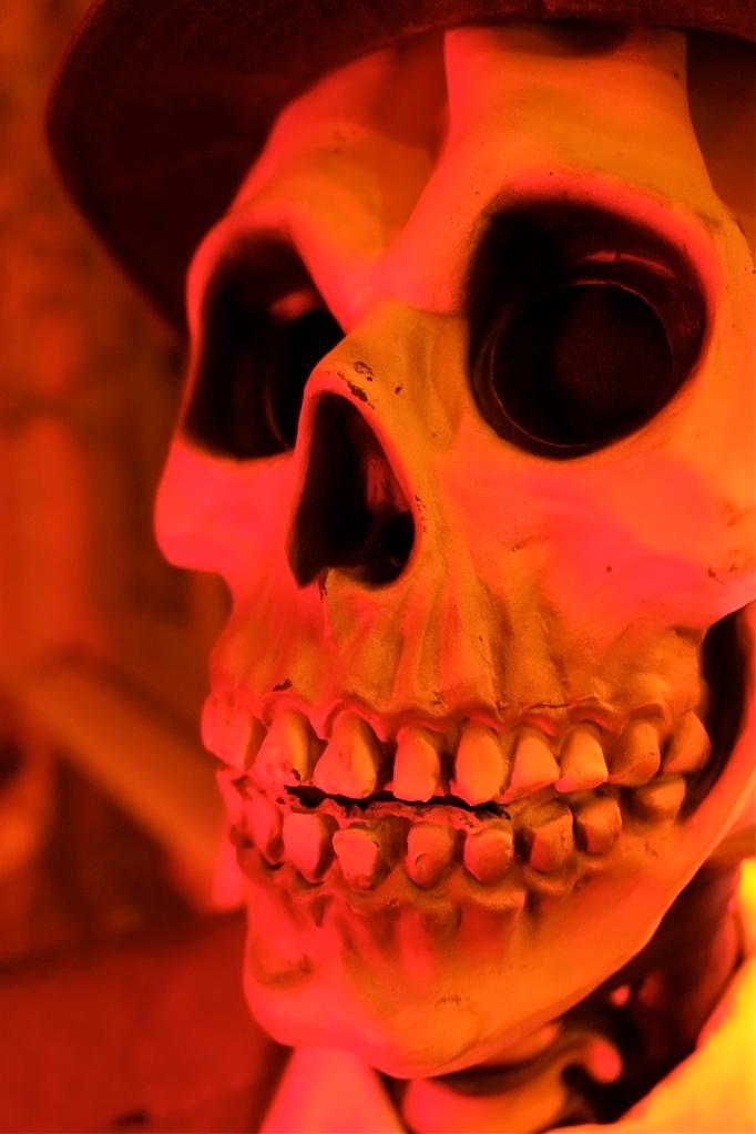 Skull ©Kim Smith 2014