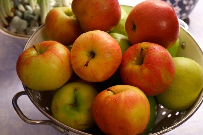 Apple Pie Making ©Kim Smith 2014