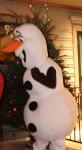 December 7, 2014 Olaf at 525