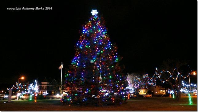 Kent Circle Christmas Tree