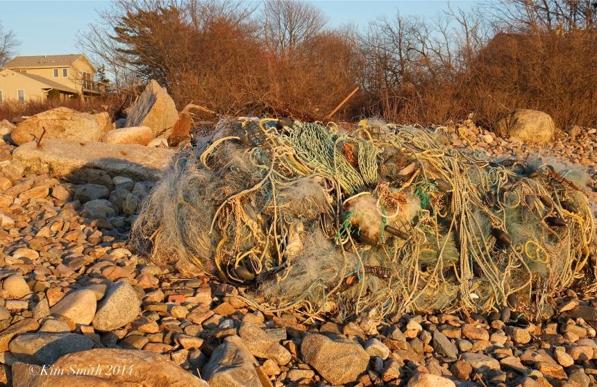 Flotsom Marine Debris Brace Cove Gloucester MA Beach ©Kim Smith 2014