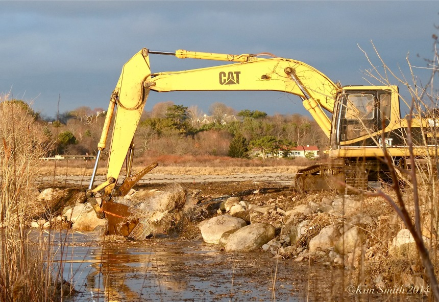 Niles Pond Brace Cove casueway restoration excavator -3 ©Kim Smith 2014.