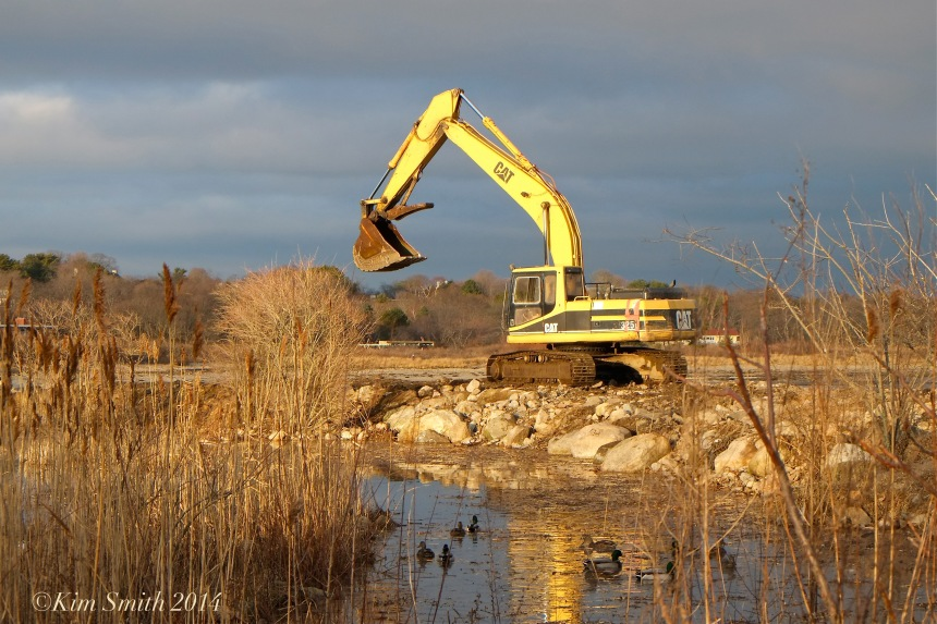Niles Pond Brace Cove casueway restoration excavator ©Kim Smith 2014.