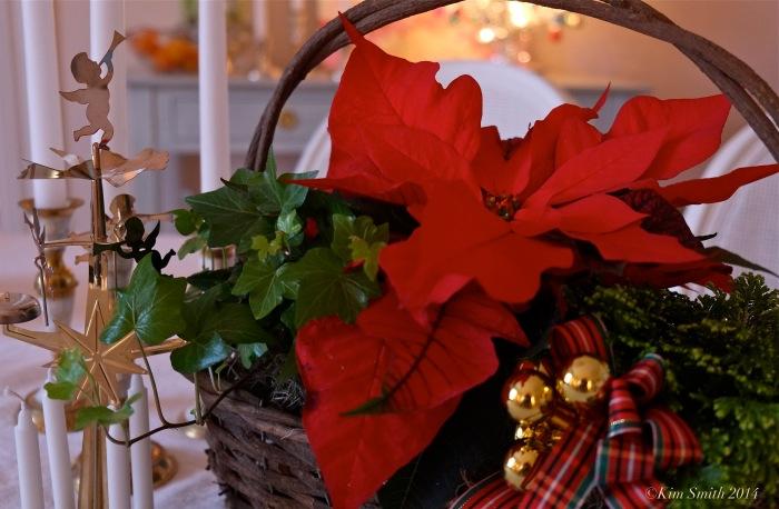 Sage Floral Gloucester florist Christmas Arrangement ©Kim Smith 2014