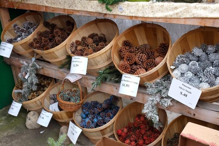 Wolf Hill Christmas pine cones ©Kim Smith 2014