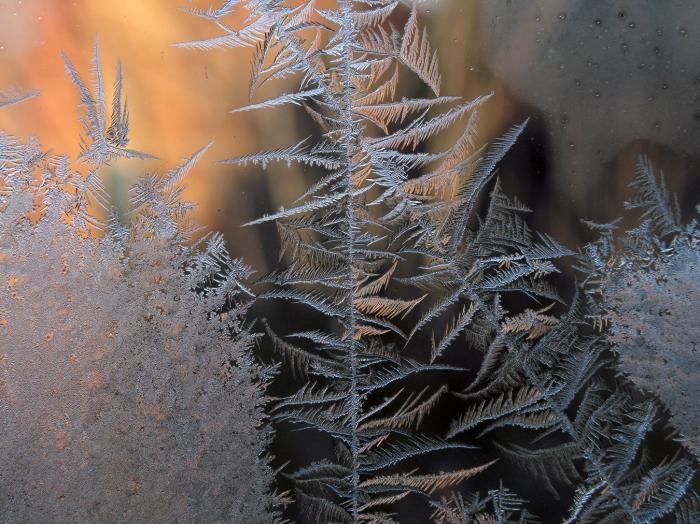 IceCrystal1-7-15_0315