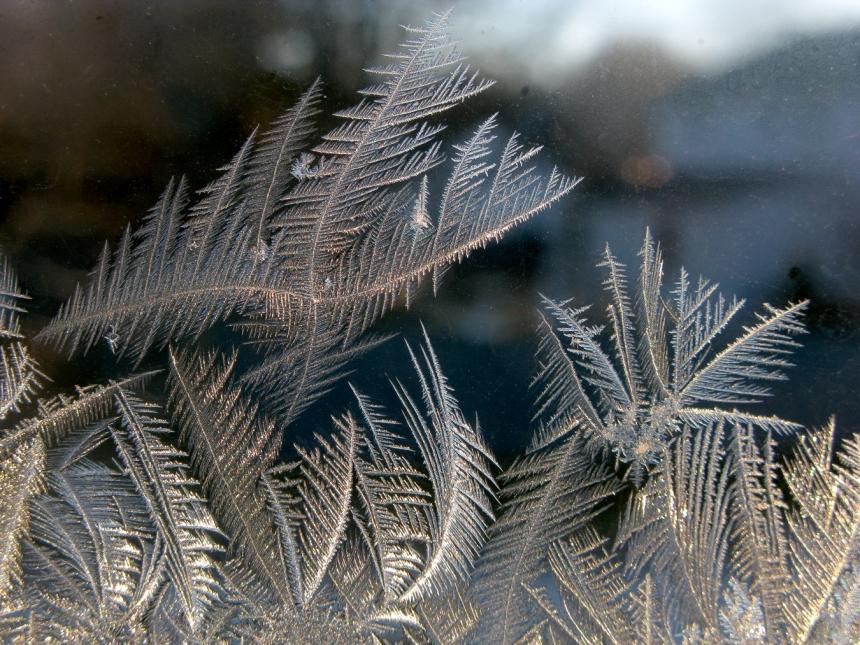 IceCrystals1-8-15_0346