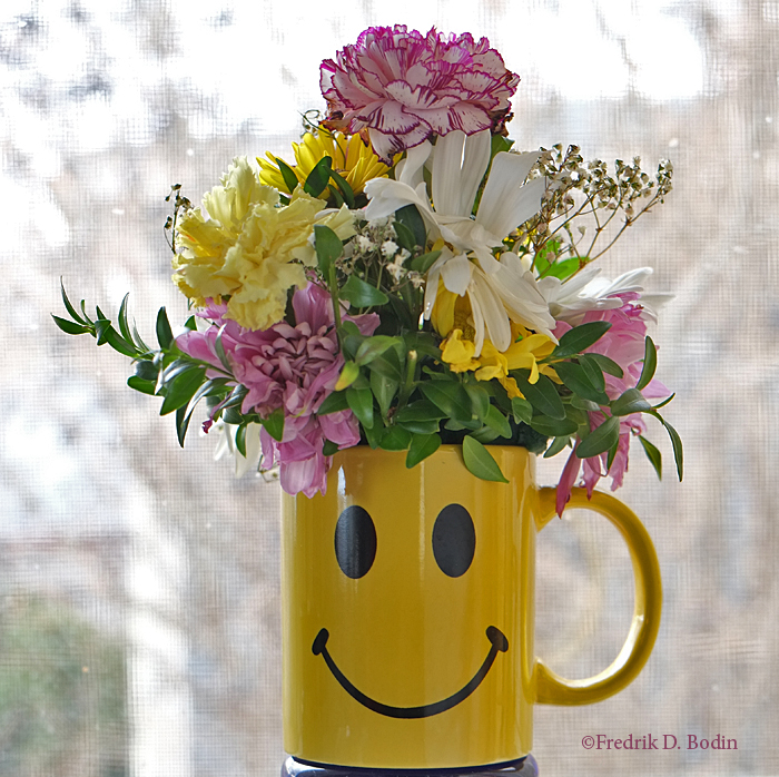 SmileyMug5133wm